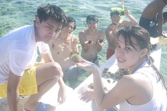 Ocean Dreamer Island Tours : swaki time
