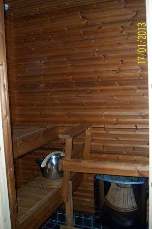 Santa's Hotel Tunturi: Hotel Gielas - in-room sauna