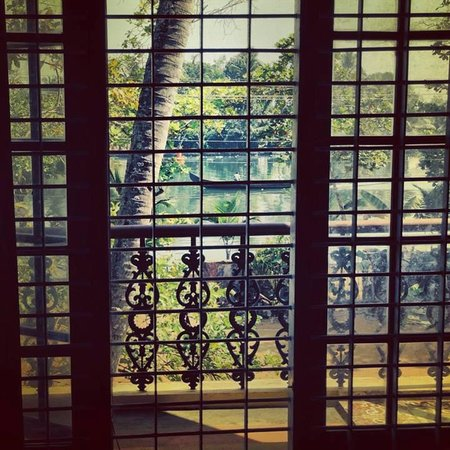 Ayana's Homestay: View from my room