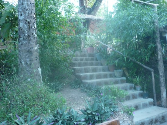 Secret Garden Resort: Starway to heaven (to the rooms)