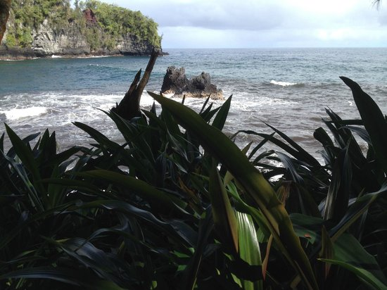 Hawaii Tropical Botanical Garden : gorgeous