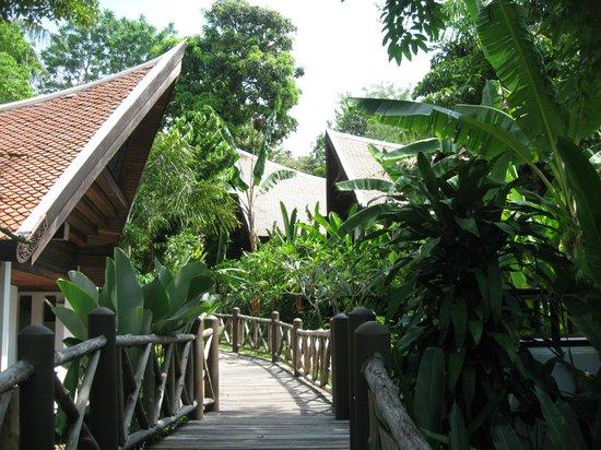 Marina Phuket Resort : бунгало на территории отеля