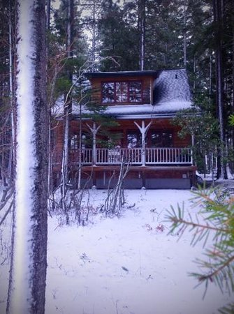 The Lodge at Suttle Lake: Trapper cabin - best accomodations with lake-front view.