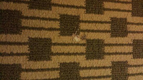 Days Inn Irving Grapevine DFW Airport North : Something sticky