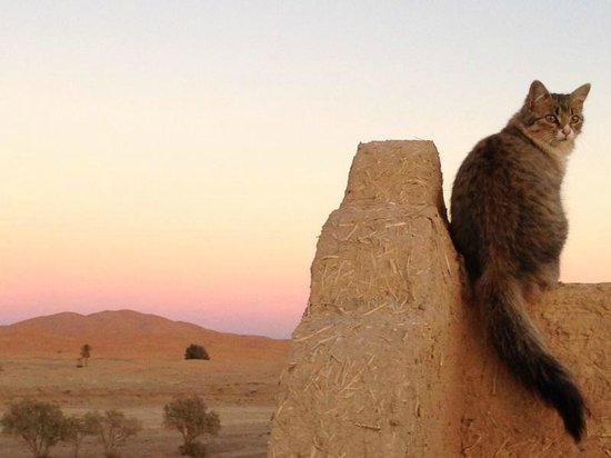 Auberge Takojt: Sonnenuntergangsstimmung