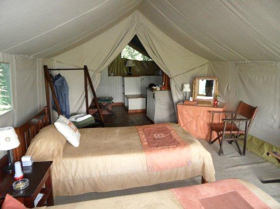Kingi Safaris - Private Day Tours: tent 35