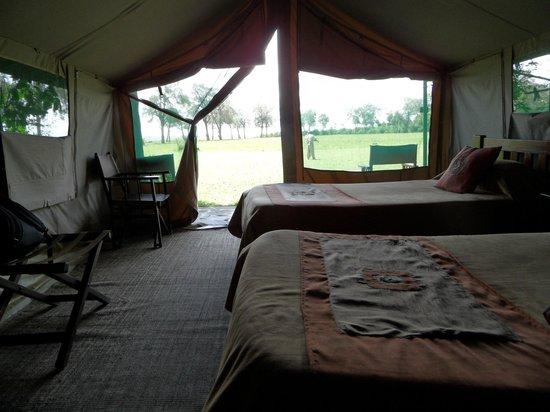 Kingi Safaris - Private Day Tours: tent35