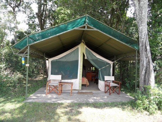 Kingi Safaris - Private Day Tours : tent 35