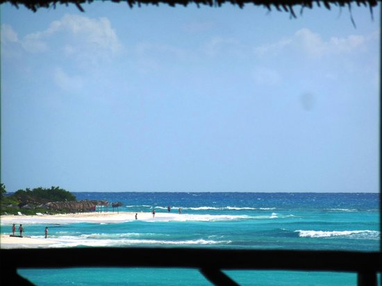 Hotel Pelicano: View from the Ranchon at lunchtime