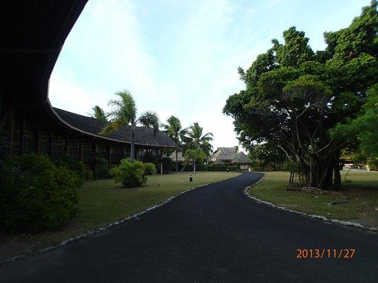InterContinental Moorea Resort & Spa: Местность