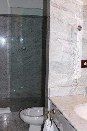 Hotel DeVille: Shower in Bathroom