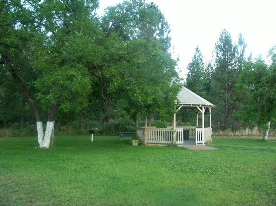 Neu Lodge Motel: Gazebo and BBQ area