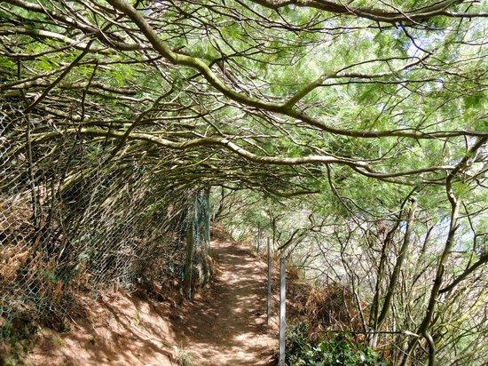 Chemin de Ronde : Verso Pointe de Grouin