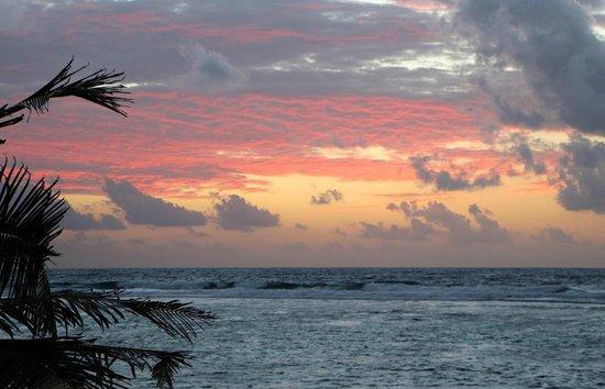 Turtle Nest Inn: Beautiful Sunrise 3