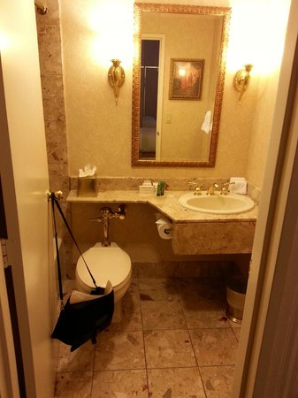 Hilton Chicago: Bathroom one