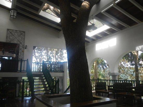 Hotel Moka: Lobby
