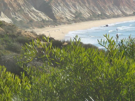 TUI BLUE Falesia : BEACH