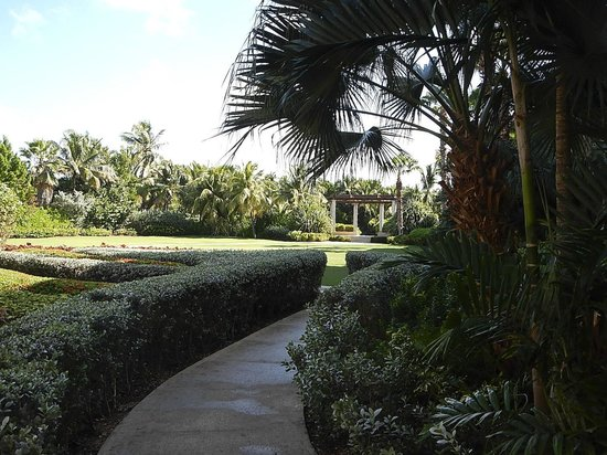 The Ritz-Carlton, Grand Cayman: The gardens - beautiful for a wedding