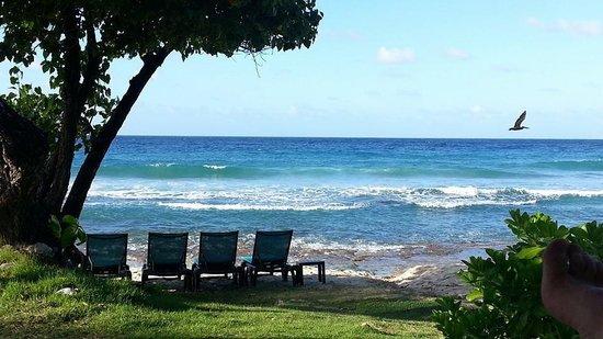 Renaissance St. Croix Carambola Beach Resort & Spa: View of the beach