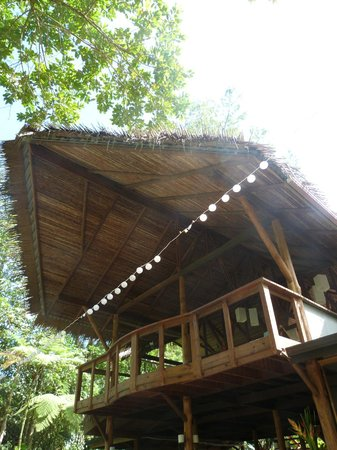 Pacuare Lodge: Lobby