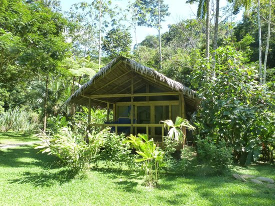 Pacuare Lodge: Bungalow