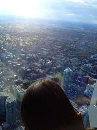 CN Tower: View from the (almost) top