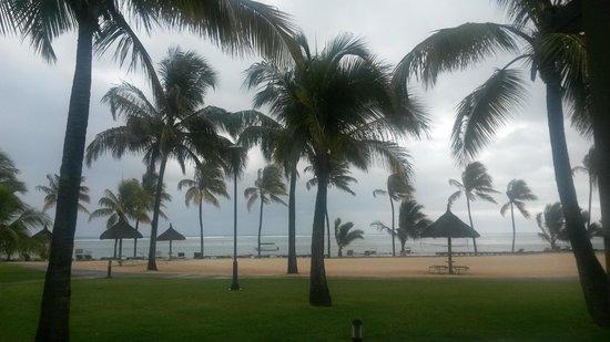 Tamassa: Under a cyclone warning!