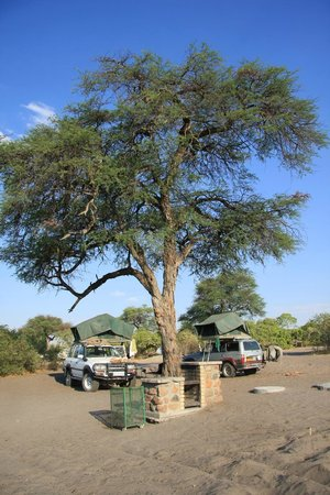 Wilderness Safaris Savuti Camp : Camp
