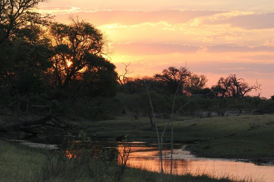 Wilderness Safaris Savuti Camp : Sonnenuntergang am Camp