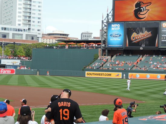 Oriole Park at Camden Yards : the field
