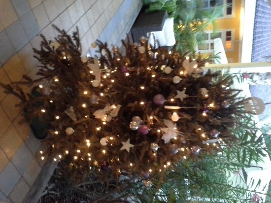 Hotel 't Klooster : новогодняя ель