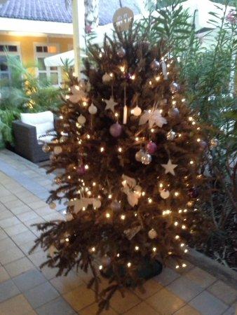 Boutique Hotel 't Klooster : новогодняя ель