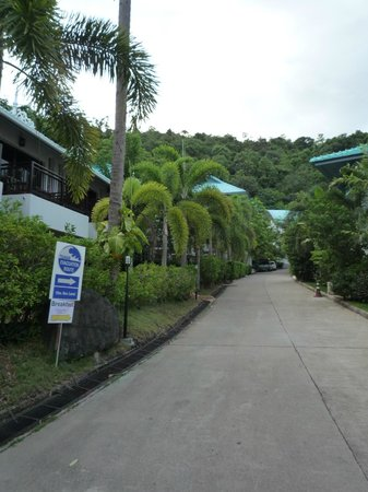 Krabi Tipa Resort: verde