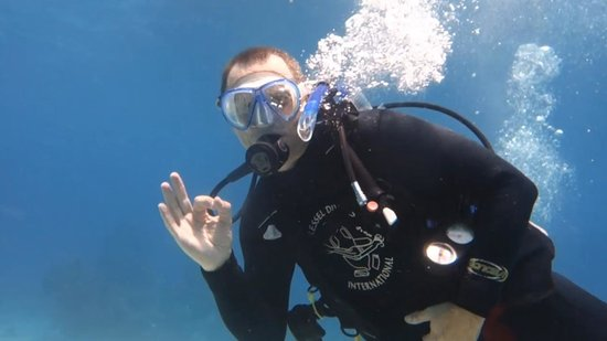 Dressel Divers: 02