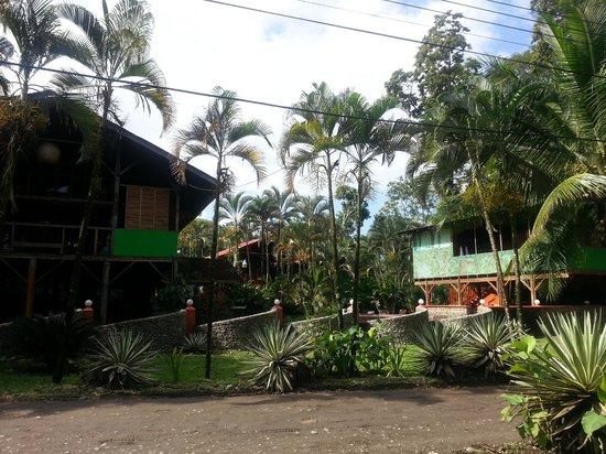 Hotel Perla Negra: hotel front