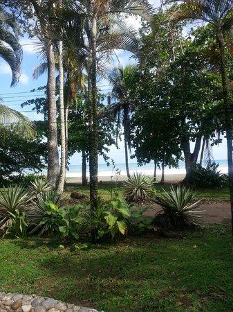 Hotel Perla Negra: beach front view