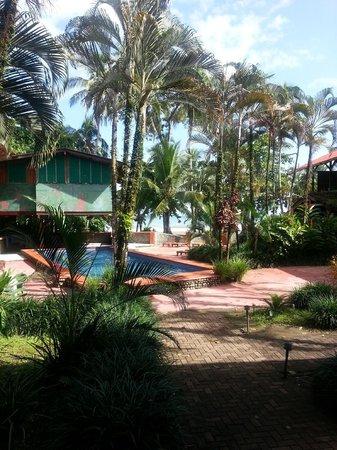 Hotel Perla Negra : pool area