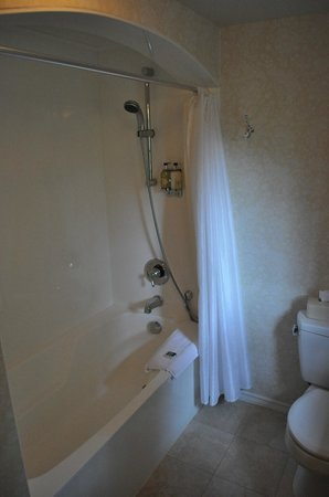 Hastings House Country House Hotel: good shower, clean bathroom