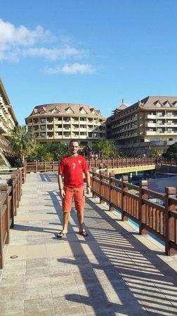 Royal Dragon Hotel: Outside area