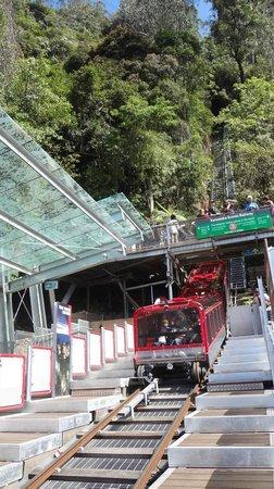 Sydney Tours-R-Us: Scenic World
