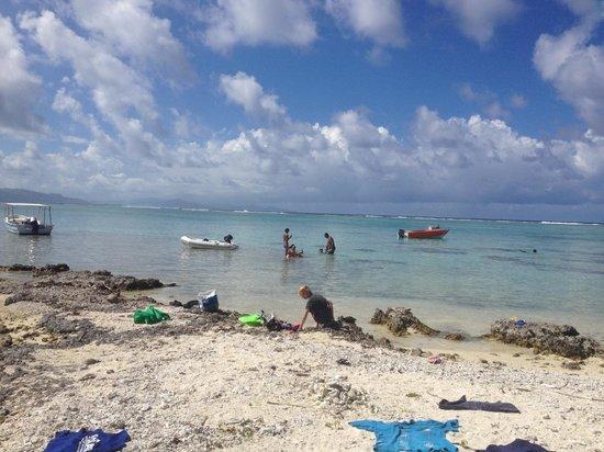 Hotel Atiapiti: Petit motu en face de l´Hotel. Avec un jardinde corail incroyable.
