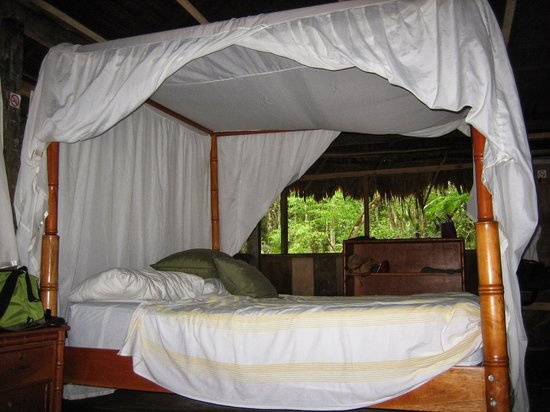Amazonia Expeditions' Tahuayo Lodge : Our room was incredible. You can't see how big it is or the lounge chairs or other beds.