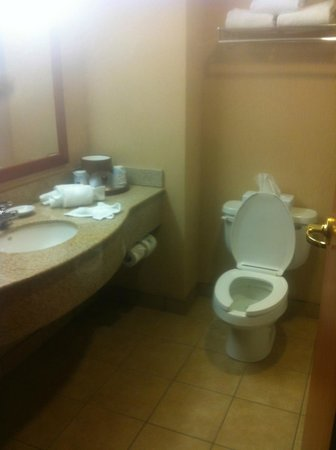 Hampton Inn & Suites by Hilton Windsor: Clean bathroom