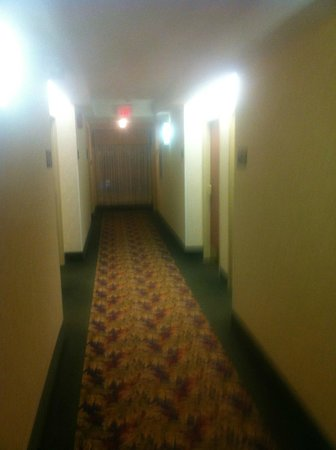 Hampton Inn & Suites by Hilton Windsor: 6th floor hallway