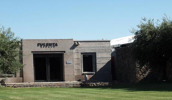 Uncorking Argentina Private Tours : Pulenta Winery