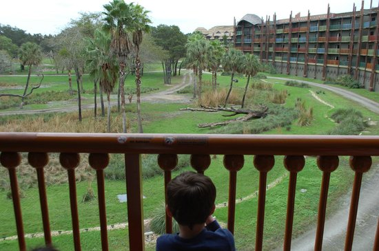 Disney's Animal Kingdom Villas - Kidani Village: view from our room