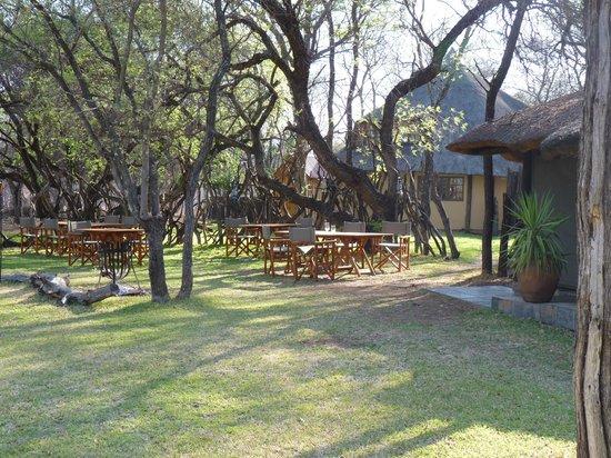 Mziki Safari Lodge: Bei guten Wetter wird im Freien gegessen - herrlich