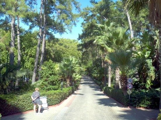 TUI Sensimar Marmaris Imperial Hotel: Huge grounds.This is the entrance driveway