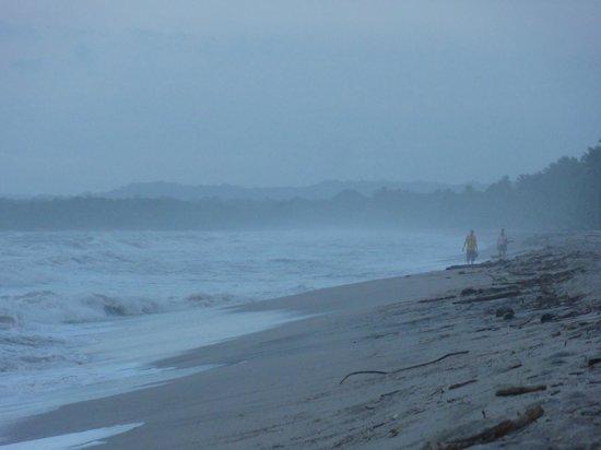 The Dreamer Hostel On The Beach: la spiaggia a pochi metri dal ''the dreamer''