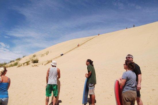 Sand Safaris Cape Reinga 90 Mile Beach Tours: Sand Safaris